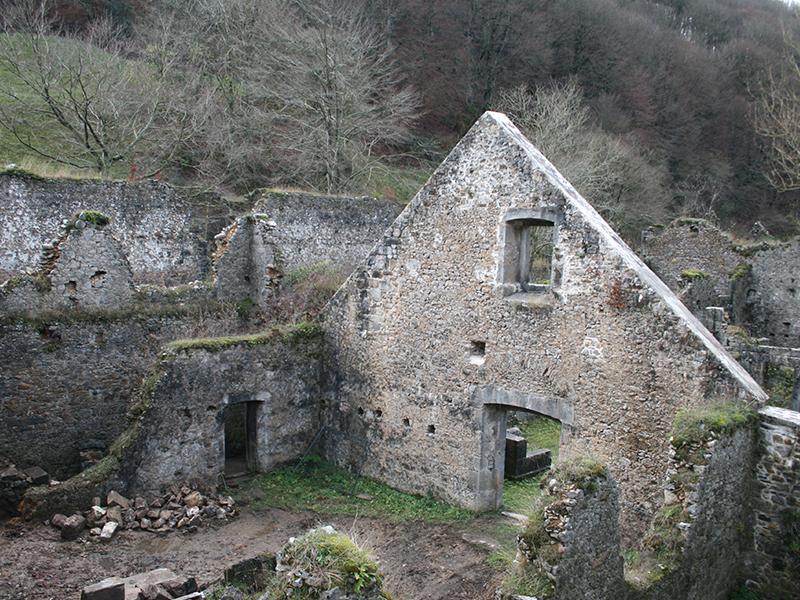Selva de Irati: Orbaiceta.
