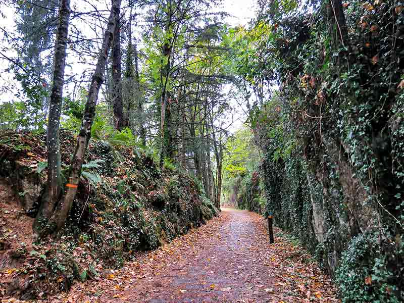 Lekumberri: Vía verde Plazaola.