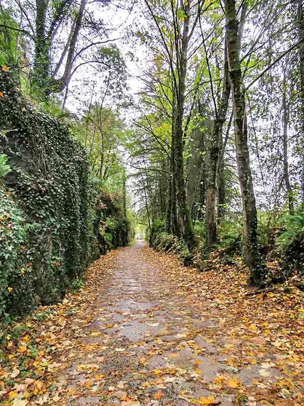 Valle de Larraun: Vía verde Plazaola.